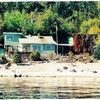 Kootenay Lake Beach Front Cottage Vacation Rentals Amsterdam, Netherlands