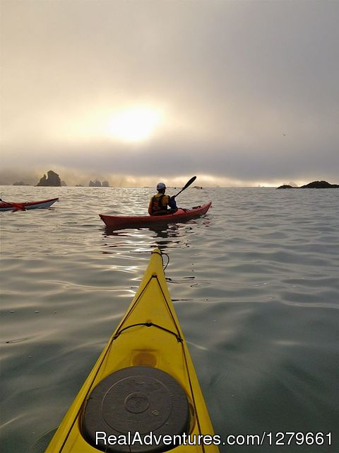 Trinidad Kayak Tour Eureka, California Kayaking & Canoeing