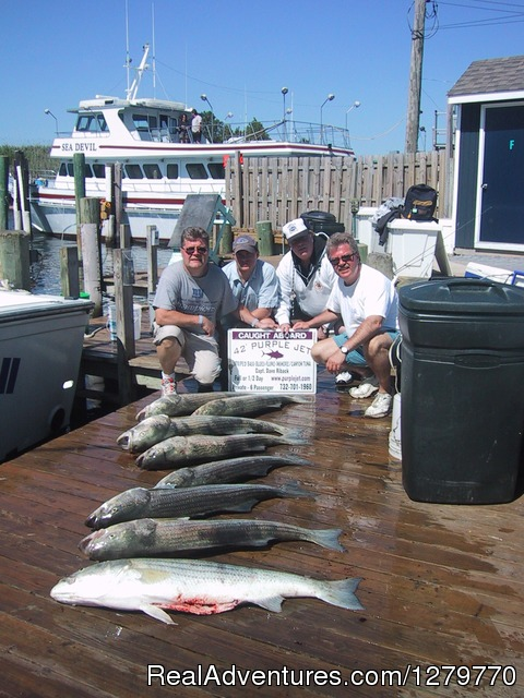 Purple Jet Charter Sportfishing Fleet Fishing Trips Point Pleasant Beach, New Jersey