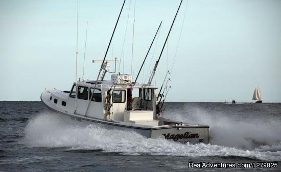 Image #6/6 | Cape Cod fishing charters with Magellan