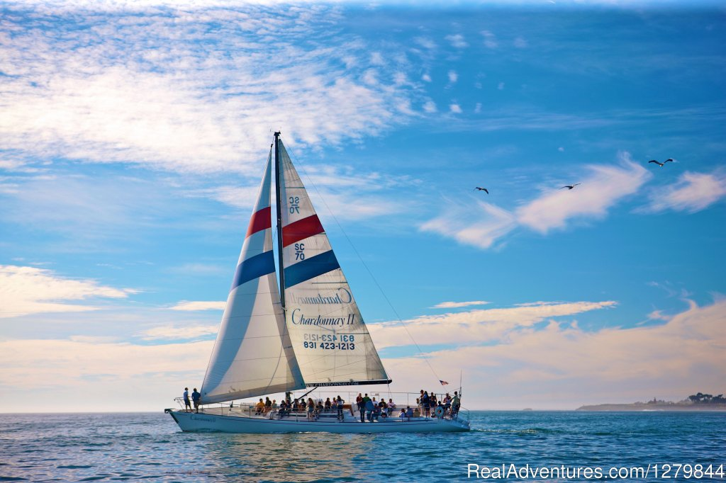 Excursions aboard Chardonnay Sailing Charters are perfect for any age group and fun for everyone from seasoned sailors to first-time adventures.