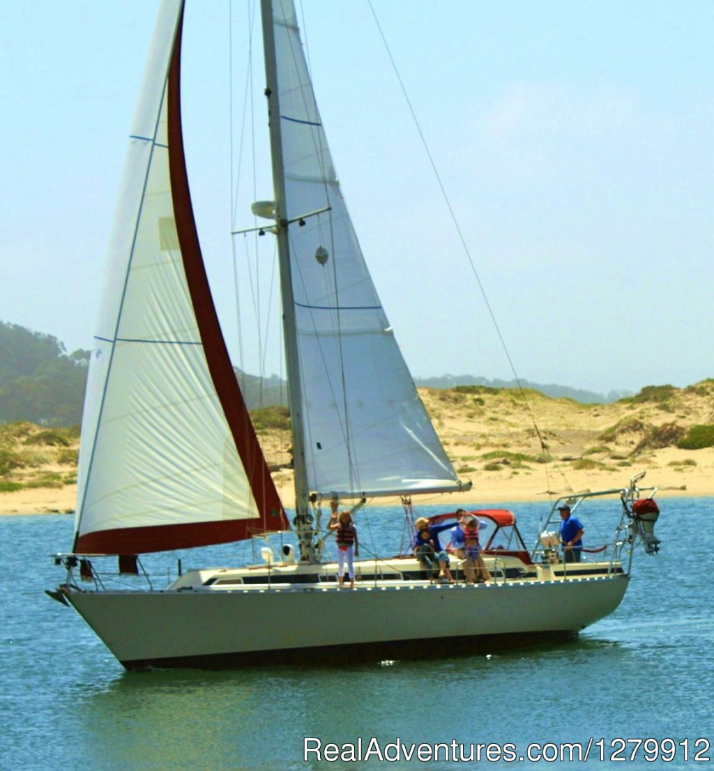 Sailing adventures for all ages and experience levels. We offer whale watching,sailing lessons, private charters and nature interpretive sailing tours of San Luis bay at Avila Beach Ca.