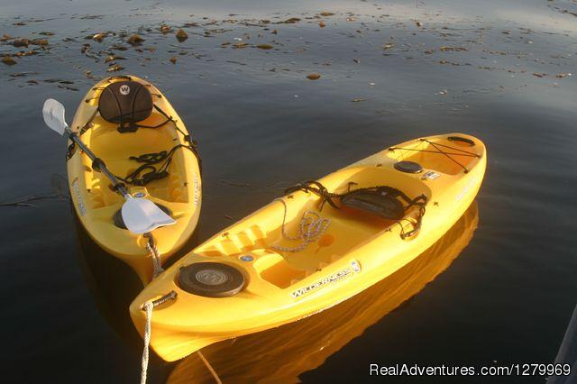 Sail Channel Islands Kayak Still Life
