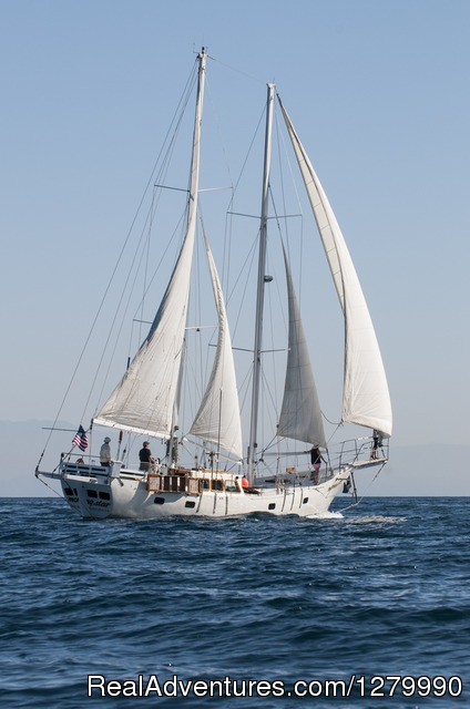 Adventure Sailing Charters