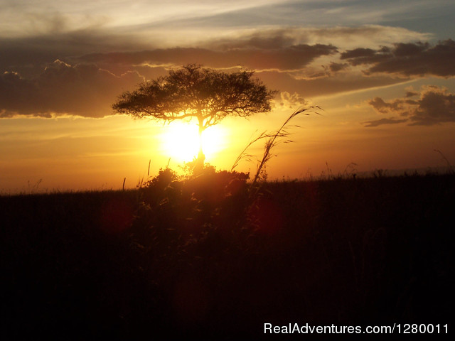 SunSet - African Safaris (Kenya & Tanzania)