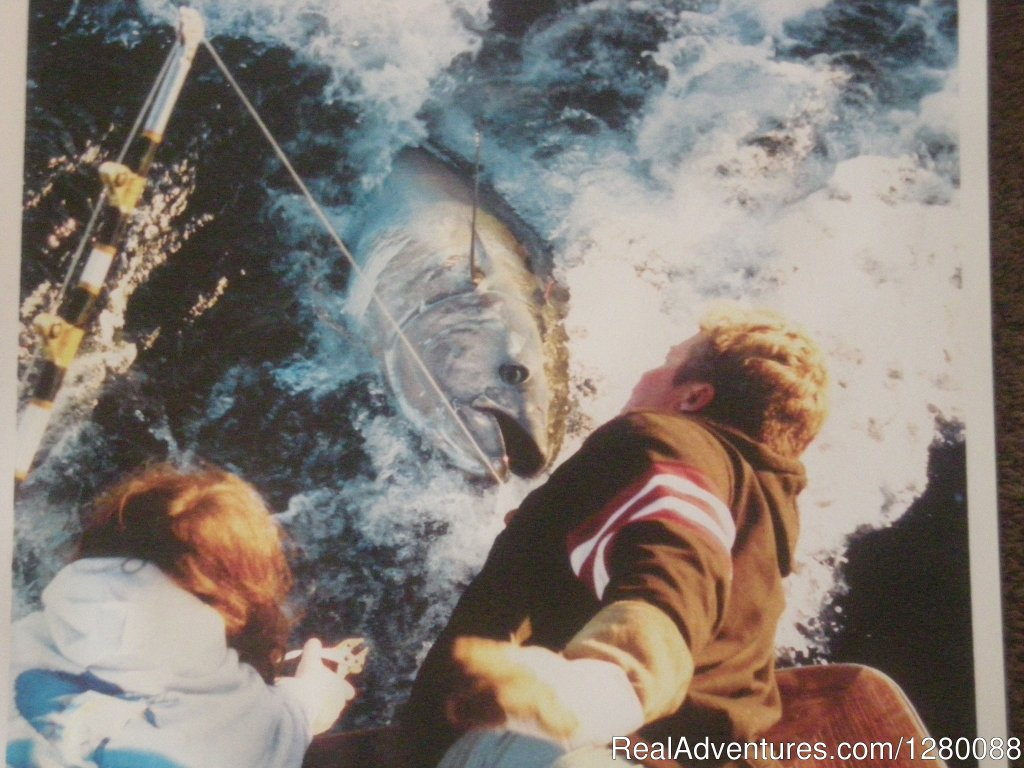 Gaint Bluefin Tuna | Image #5/6 | Wicked Tuna charters Gaint Bluefin Tuna