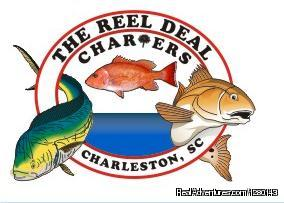 The Reel Deal Charters Charleston, South Carolina Eco Tours