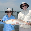 Clearwater Florida Fishing Charters and Guides Fishing Trips Florida