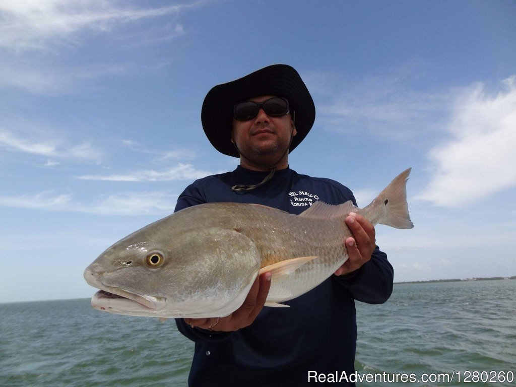 That's a Redfish | Image #3/4 | Reel Mell-O Sportfishing