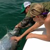 Flats/Backcountry Fishing Guide Fly & Spin Islamorada, Florida Fishing Trips