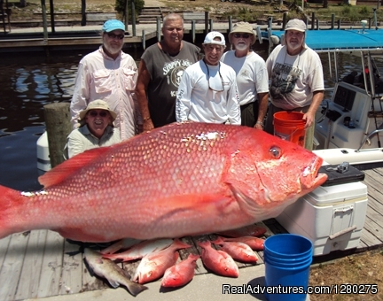 Mexico Beach Charters we love to catch fish--Big fish