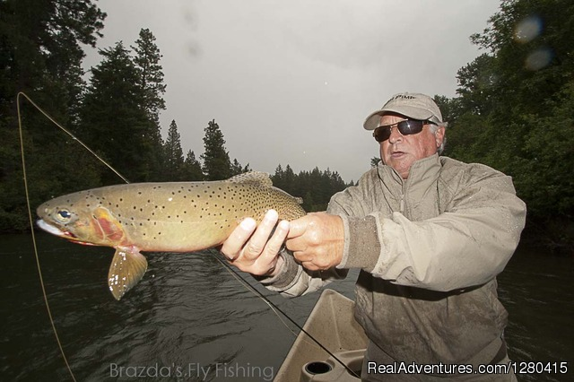 - Brazda's Fly Fishing, scenic trout fishing trips.
