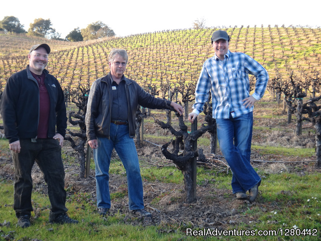 Terrific Tours Sonoma, California Sight-Seeing Tours