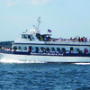 Plymouth to Provincetown Express Ferry River Cruises Massachusetts