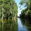 Premier Boat Tours Scenic Cruises & Boat Tours Florida