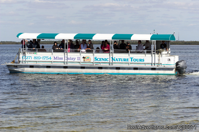 Miss Daisy Boat Tours Cotee, Florida Cruises