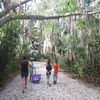 Around the Bend Nature Tours Cultural Experience Florida