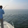 Premier Sportfishing Adventures
