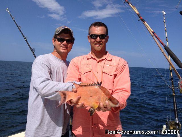 Lady pamela 2 sportfishing boat rentals hollywood for Hollywood florida fishing
