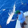 Lady Pamela 2 Sportfishing & Boat Rentals