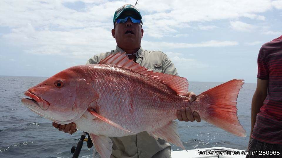 Fired Up Charters Red Snapper | Image #7/13 | Fired Up Fishing Charters