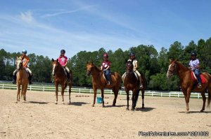 Haile Plantation Equestrian Center Horseback Riding Gainesville, Florida