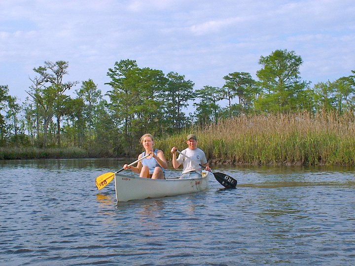 Cathead Creek | Image #3/3 | Altamaha Coastal Tours: Kayak-Canoe-Camp