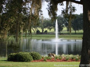 Grand Oaks Resort & Museum Lady Lake, Florida Campgrounds & RV Parks