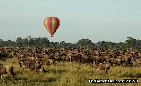 6 Days Rift Valley Lakes & Mara Camping Safaris: Bird's View