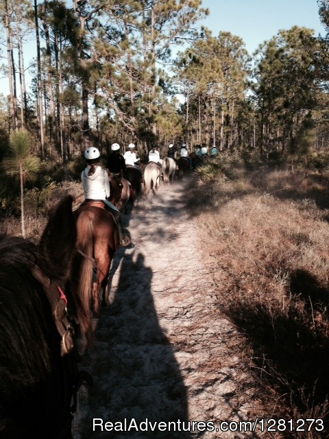 Gulfside Trail Rides, LLC