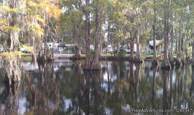 - Orlando's Winter Garden RV Resort