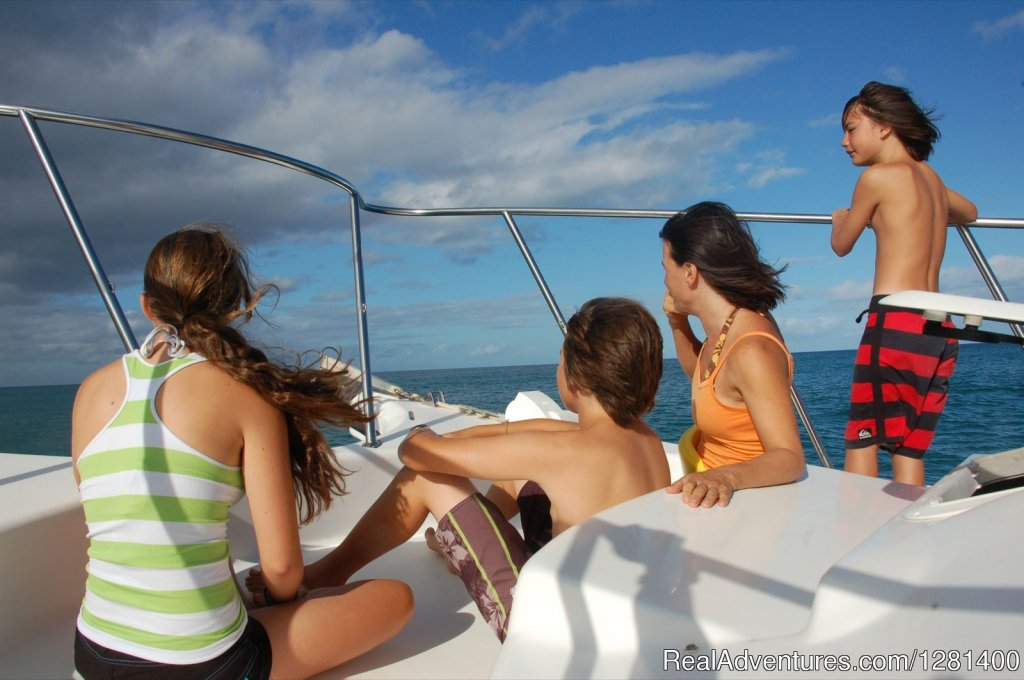 Getting kids into nature | Image #2/7 | Whale Watching, Swimming with Dolphins, Snorkeling