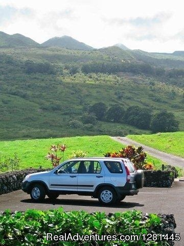 One of a kind private tours of Maui since 1983