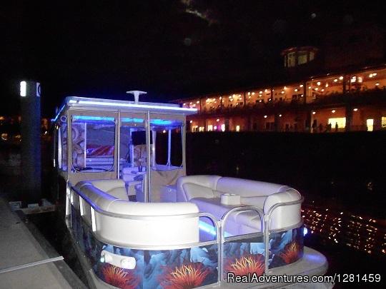 Island Adventures Boat Tours Venice Fl