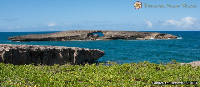 - Oahu Circle Island Tour