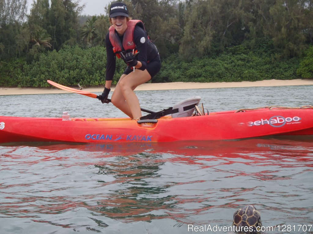 Guided Eco-Kayak Tours with clear bottom windows for viewing green sea turtles in a protected secret cove.  Kayaks surfing and stand-up kayaking available during the tour as well for those that want to try them.
