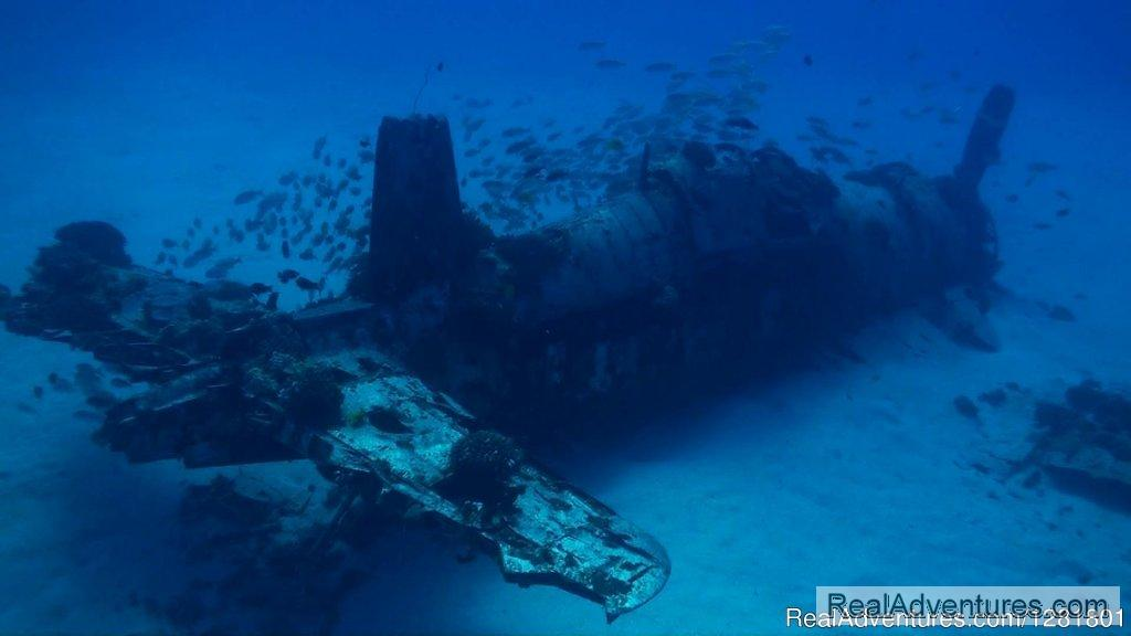 Corsair wreck on the more advances dives in Hawaii | Image #4/6 | Hawaii Eco Divers