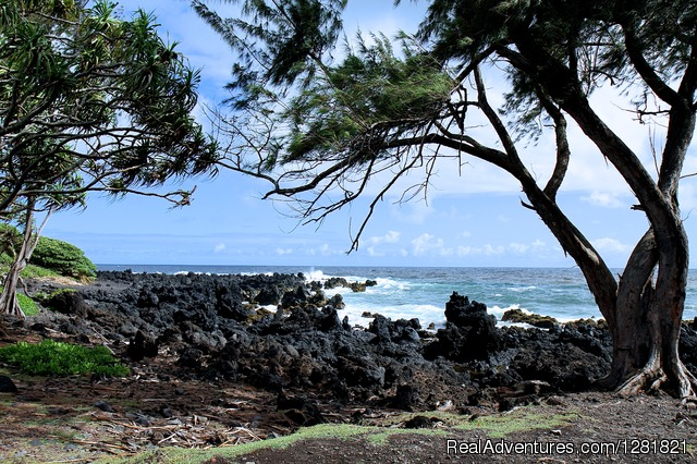 1 Road to Hana Tour