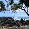 1 Road to Hana Tour Sight-Seeing Tours Kahului, United States
