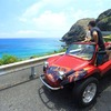 Barefoot Buggy Sight-Seeing Tours Honolulu, Hawaii