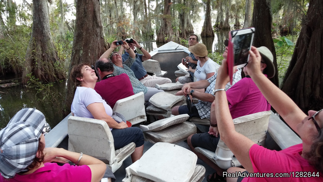 Eco-swamp tours at Cajun Country Swamp Tours