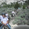 Indian Grove Outfitters Almo, Idaho Horseback Riding