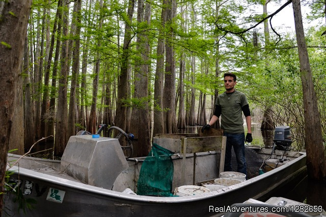 - The Last Wilderness Swamp Tour