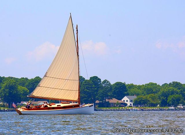 sail selina II in the Miles River