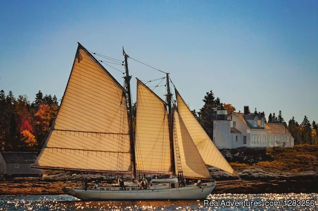Schooner Ladona sailing past Pumpkin Island, Maine - The Maine Windjammer Association