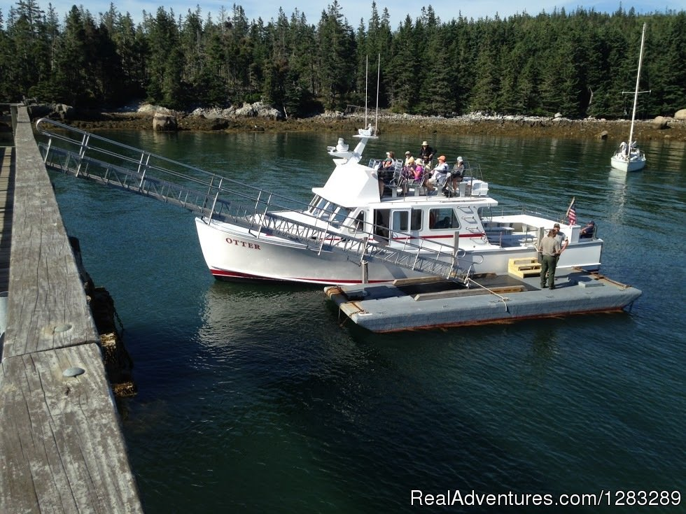 Ferry to Isle au Haut and Acadia National Park; birdwatching cruises to Seal Island puffin nesting area