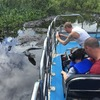 'BJ'S Airboat Adventures'