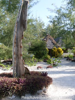 Relax in peaceful Kae Zanland Zanzibar, Tanzania Bed & Breakfasts