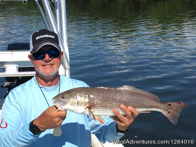 Inshore slam fishing charters tampa palmetto florida for Fishing charters tampa