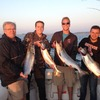 Wild Thing Fishing Charters
